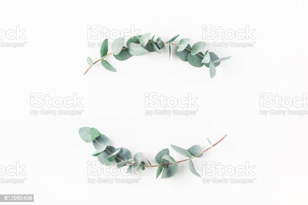 Wreath made of eucalyptus branches flat lay top view picture id812993406?b=1&k=6&m=812993406&s=612x612&h=sorgqt1j i 99medui5odwjkroqkytcbwv 5ybpzhjy=
