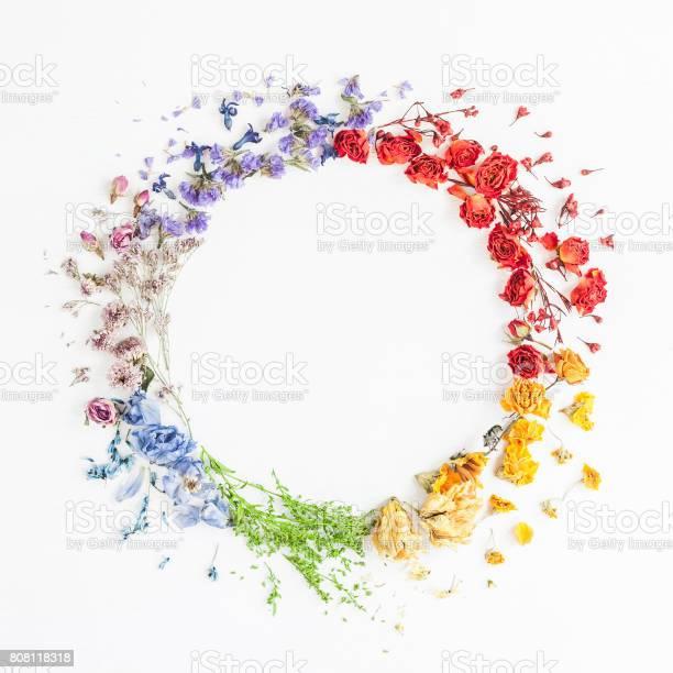 Wreath made of rainbow flowers flat lay top view picture id808118318?b=1&k=6&m=808118318&s=612x612&h=phvt6d2fmobdbxaiy730zqo78lqdv9ugkchcmyvxxhq=