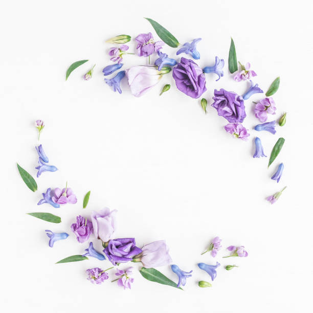 흰색 바탕에 다양 한 다채로운 꽃의 화 환 - 히아신스 뉴스 사진 이미지