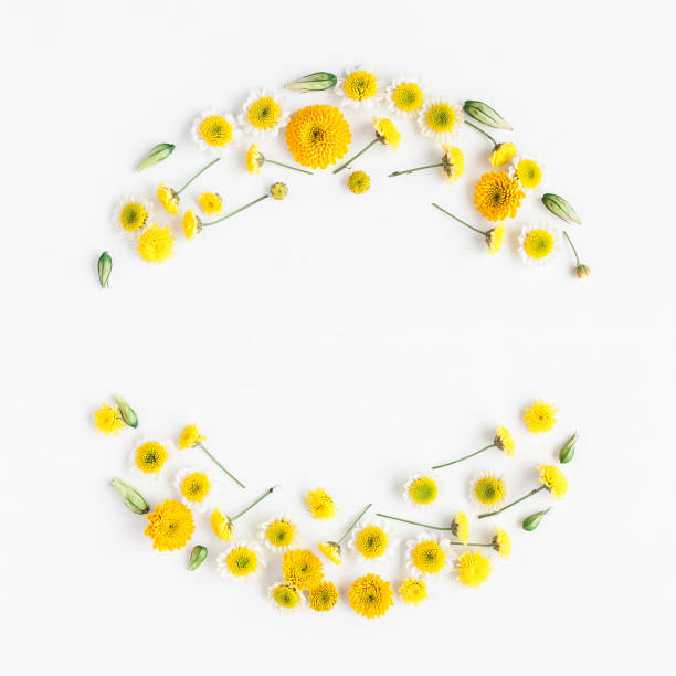 Wreath made of various yellow flowers on white background stock photo