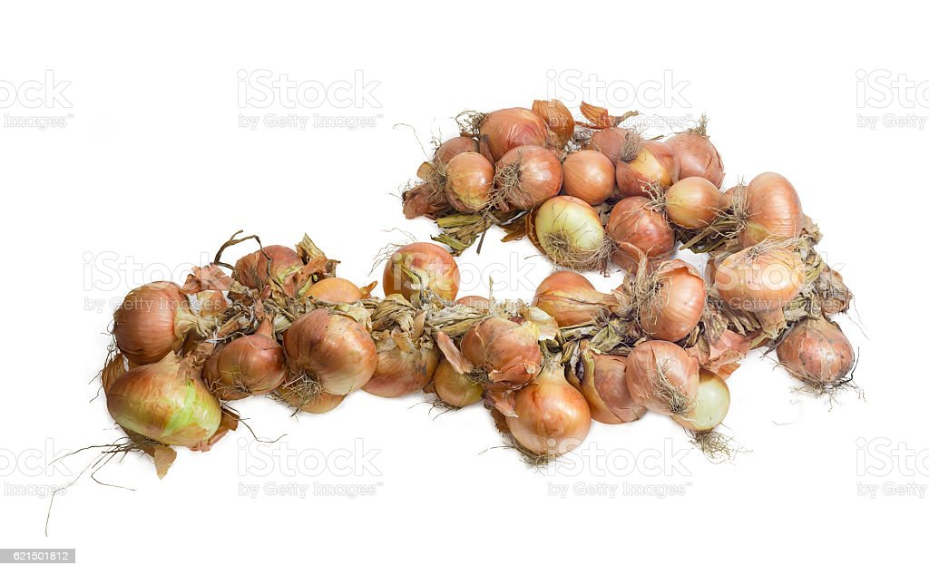 Wreath of onions on a light background photo libre de droits
