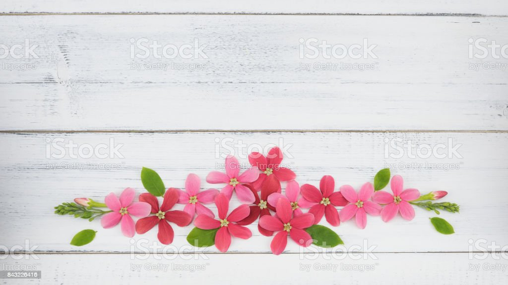 Wreath of pink and red flowers with green leaves stock photo