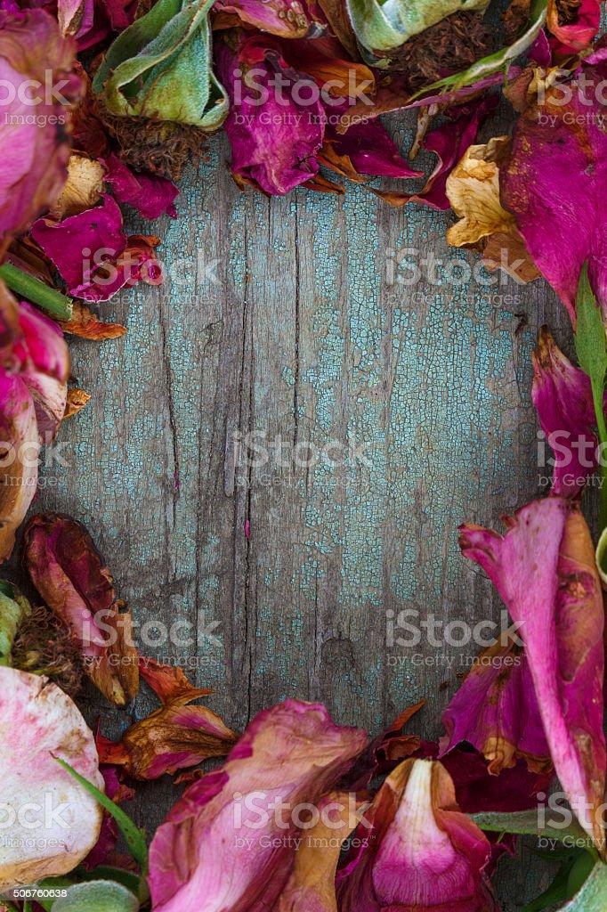wreath of roses stock photo