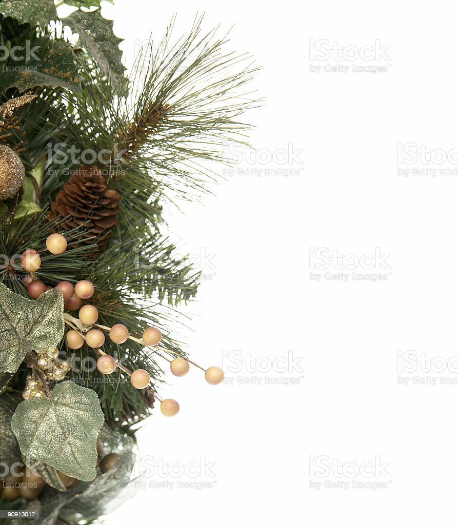 Wreath series: Pinecones. royalty-free stock photo