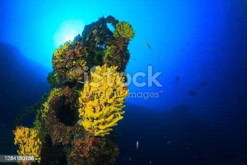 istock Wreck diving Underwater yellow sea sponge deep in sea Sea life Mediterranean sea Scuba diver point of view 1284180786