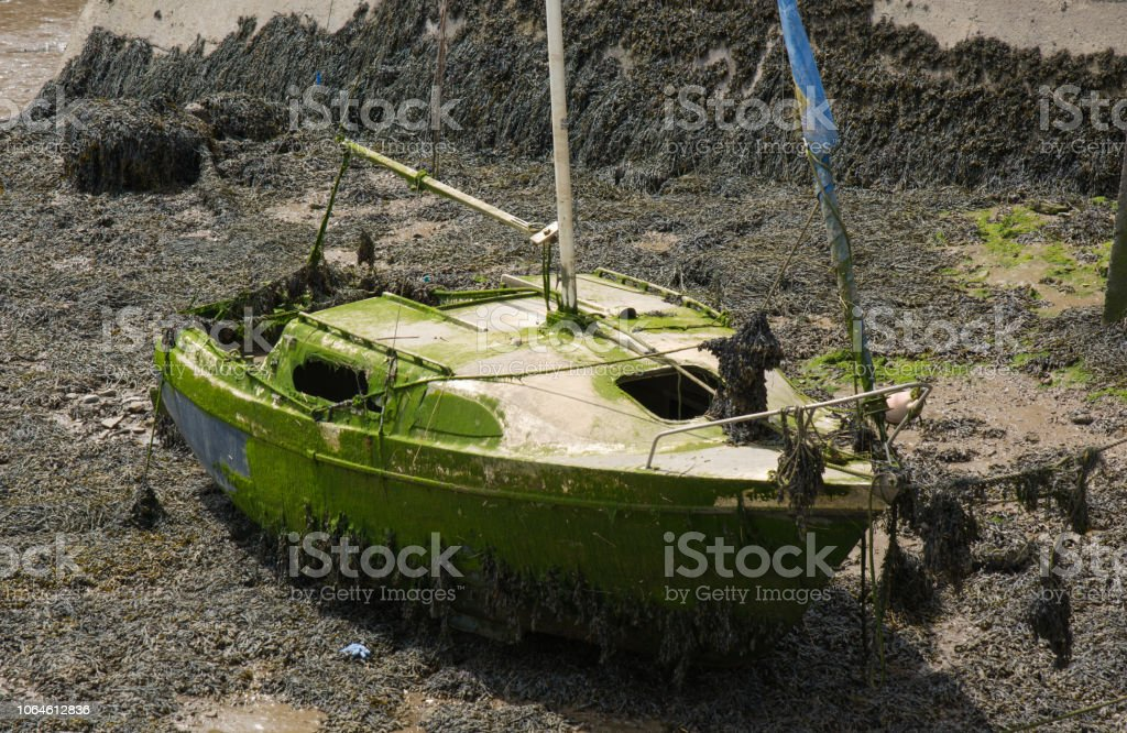 Wreck of a small yacht on river mud stock photo