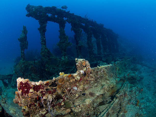 wreck of the rhone, columns - wreck diving stock pictures, royalty-free photos & images