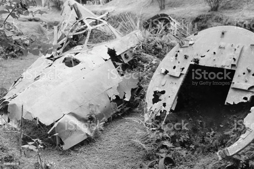 Wreckage of a World War Two Plane in Papua New Guinea stock photo