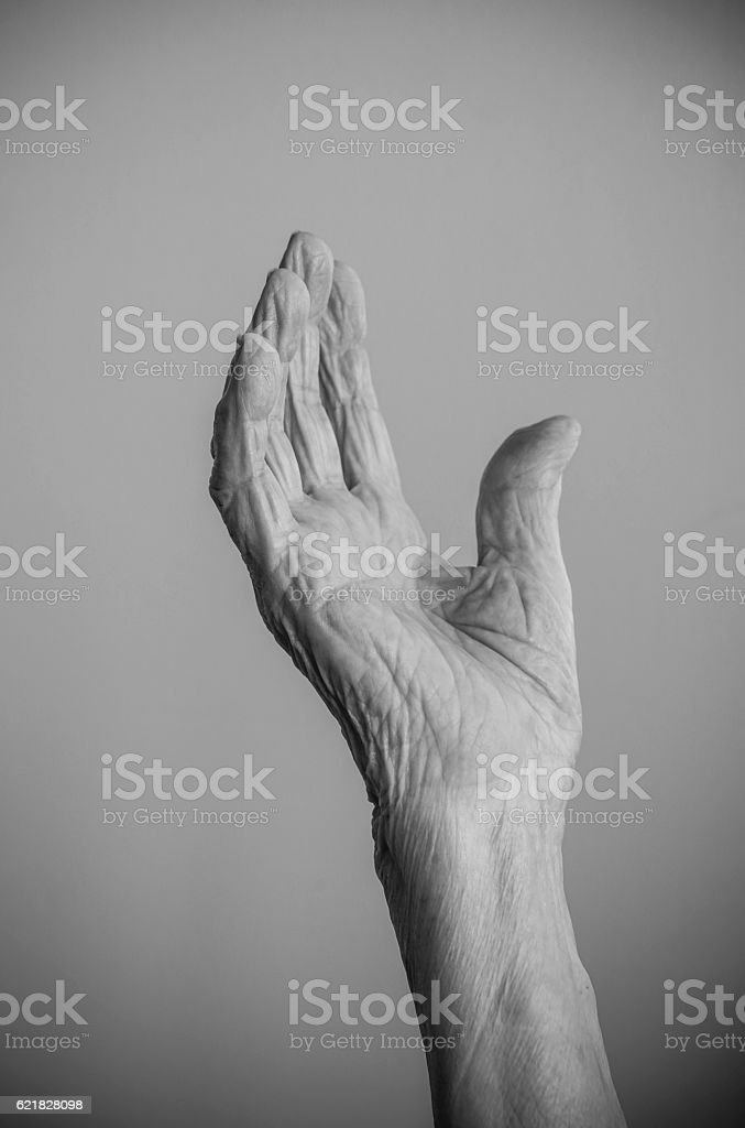 wrinkled hand of a senior person stock photo