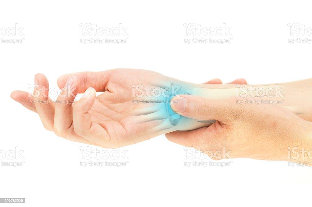 Ungewöhnlich Knochen In Der Hand Und Handgelenk Zeitgenössisch ...