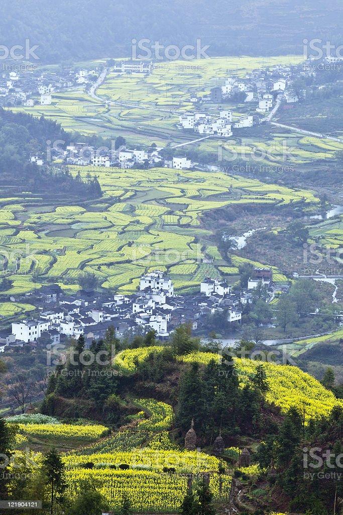wuyuan, china: terraced field stock photo