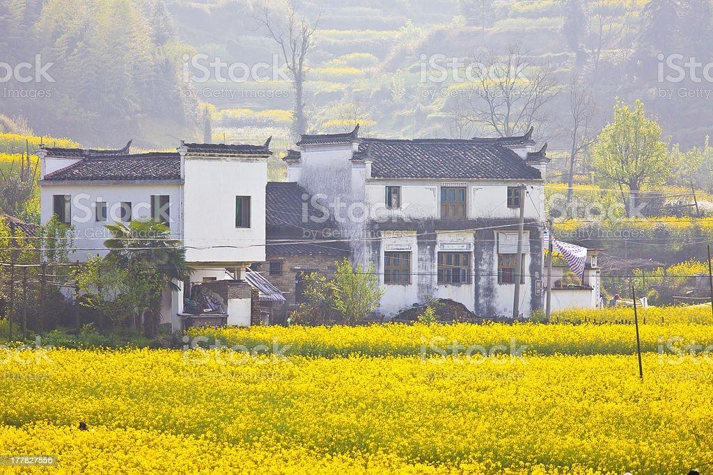 Wuyuan landscape in China at spring royalty-free stock photo