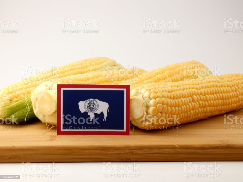 Wyoming flag on a wooden panel with corn isolated on a white background stock photo