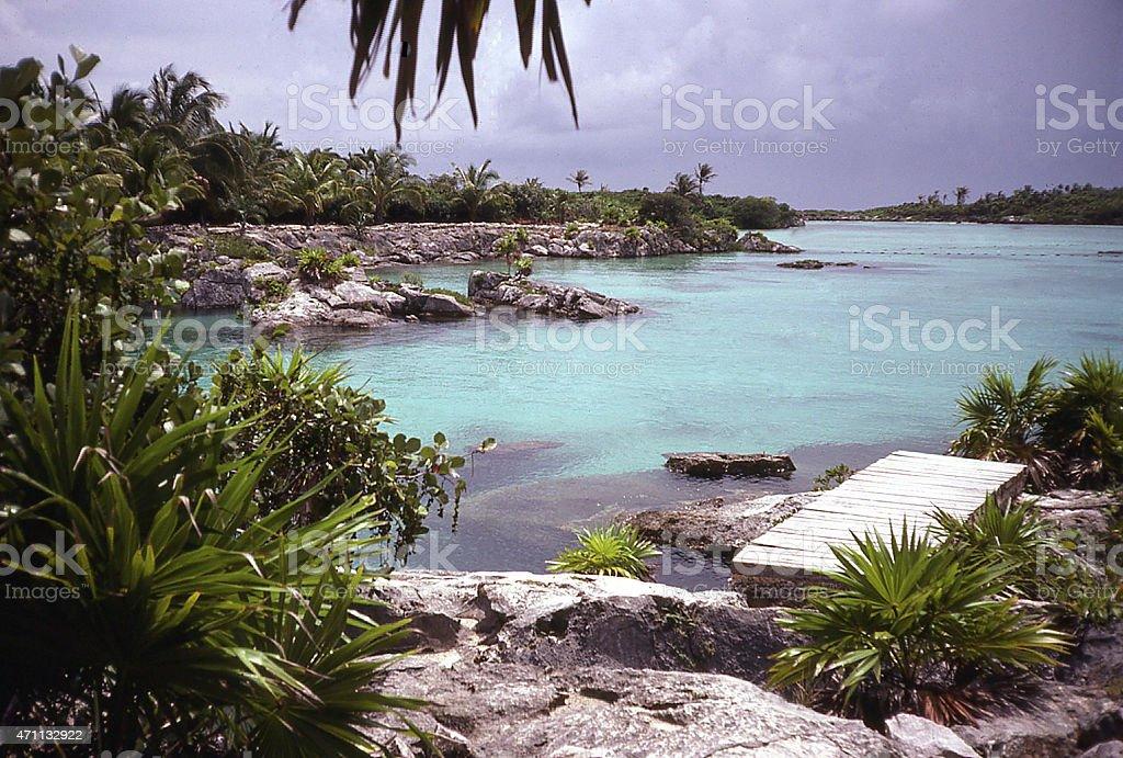 Xel-Ha karts limestone sinkhole and natural aquarium south Cancun Mexico stock photo