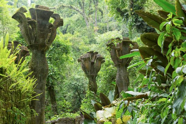 Xilitla, Mexico: Las Pozas gardens stock photo