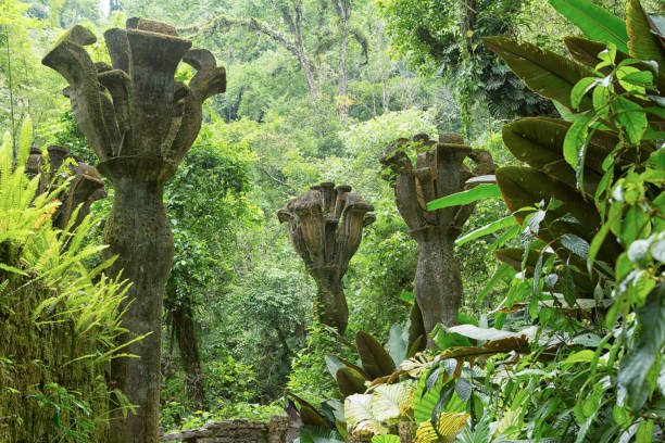 Xilitla, Mexico: Las Pozas gardens Las Pozas also known as Edward James Gardens as well, with concrete structures blending in to vegetation in the most Northern jungle of the country nowadays a tourist destination san luis potosi stock pictures, royalty-free photos & images