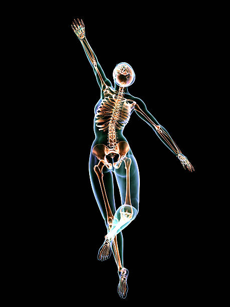 X-Ray Dancer stock photo