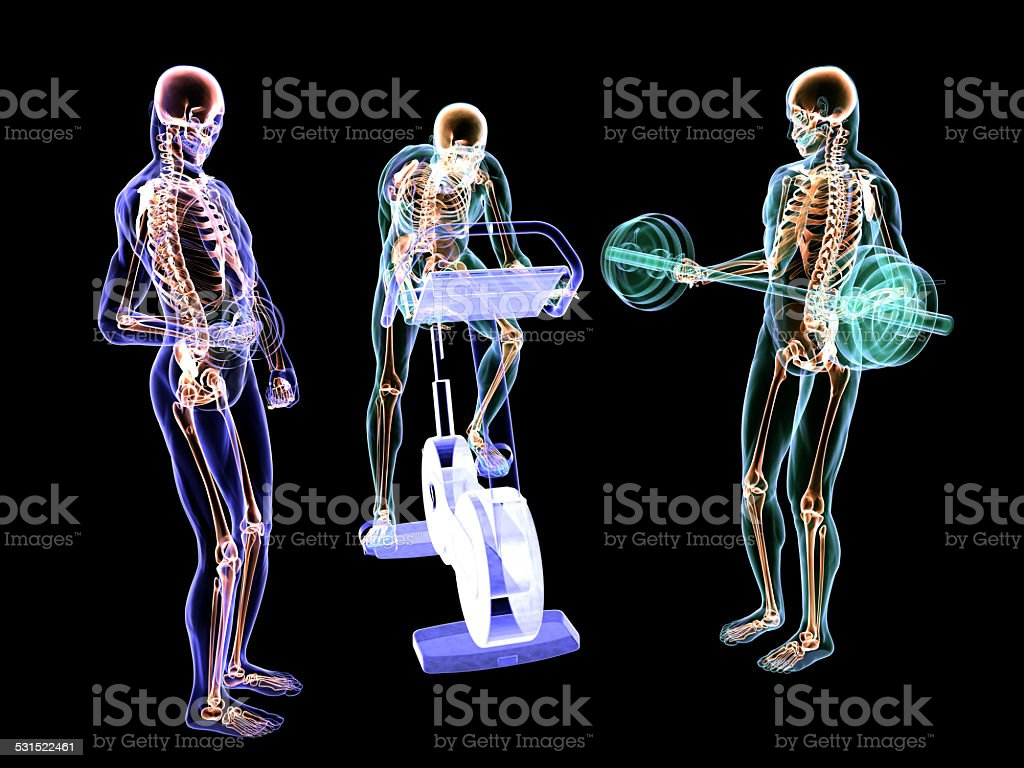 X-Ray Fitness Training stock photo