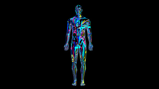 692684668 istock photo x-ray humain body colorful, humain body scan 1186540375