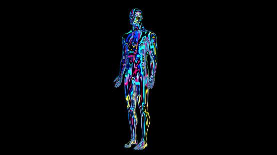 692684668 istock photo x-ray humain body colorful, humain body scan 1186540922