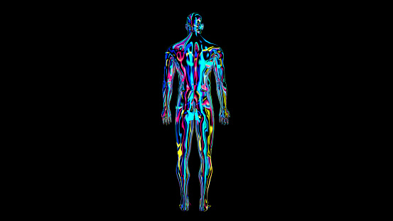 692684668 istock photo x-ray humain body colorful, humain body scan 1186541124