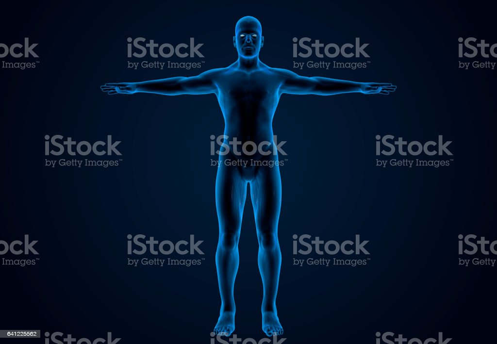 X-Ray Human Body Of A Man vector art illustration
