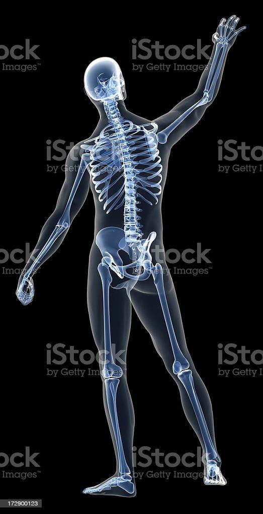 Fotografía de Xray Cuerpo Humano De Un Hombre Con El Esqueleto ...