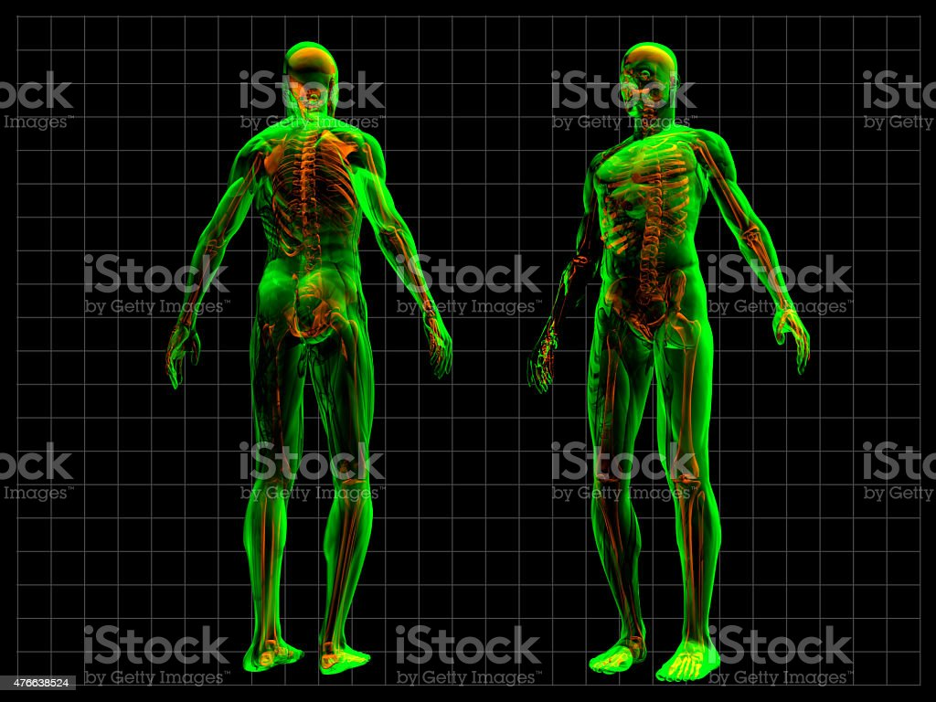 X-Ray Human Body stock photo