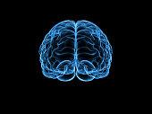 istock X-ray human brain, 3d illustration 613676872