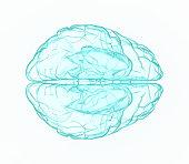 istock X-ray human brain in blue. 516722704