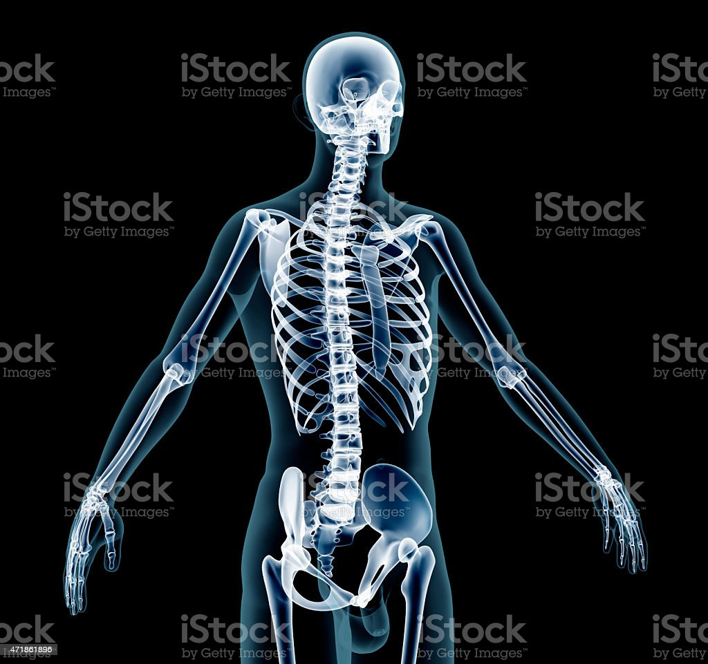 x-ray man stock photo