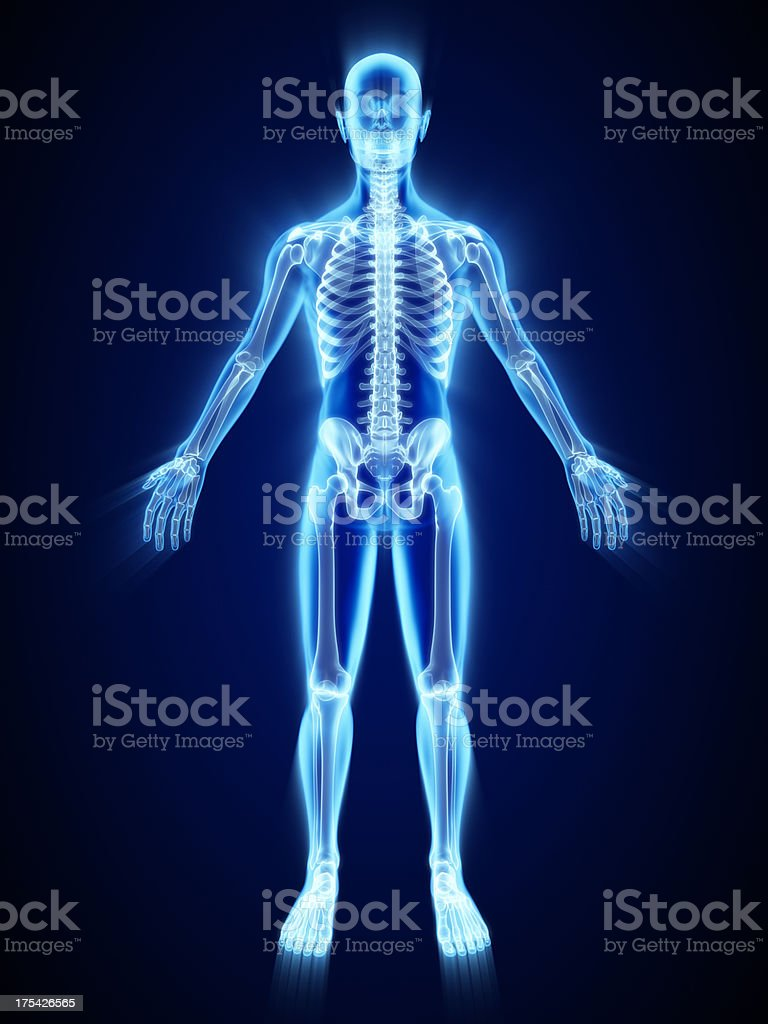 X-ray of skeleton - 免版稅X光片圖庫照片