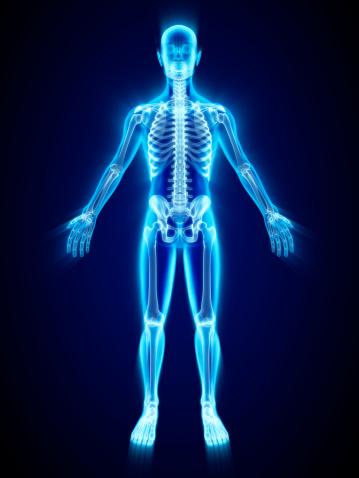 Xray Of Skeleton 照片檔及更多 X光片 照片
