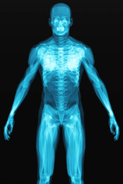X-ray scan of the human body stock photo