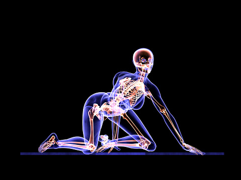 Pilates anatomy and healthy women. / Business life is to apply a lot of pressure on women. Ideal size that offers the minds of the media is constantly pushing. Yoga, Pilates and fitness, the working woman has become one of the most important relaxation spot.
