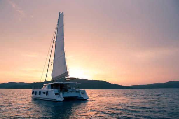yacht - katamaran i havet. segling vid solnedgången - katamaran bildbanksfoton och bilder