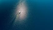 Luxury yacht sailing through sea, Croatia