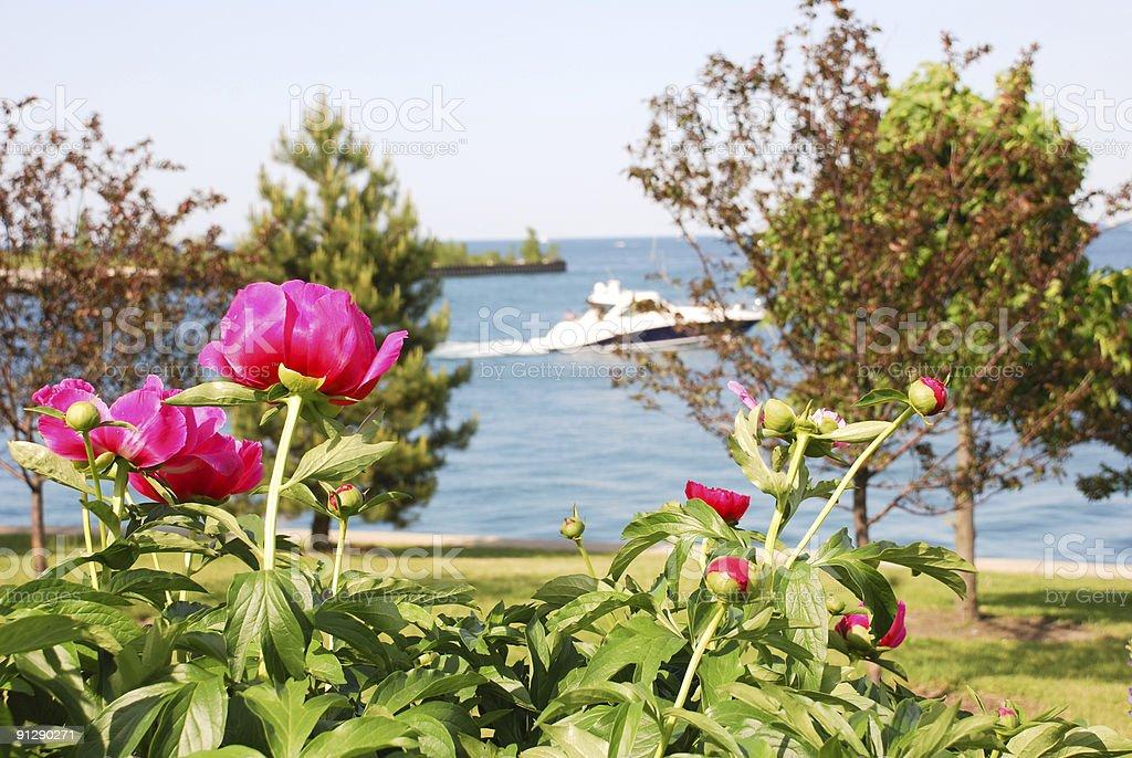 Yachting season stock photo
