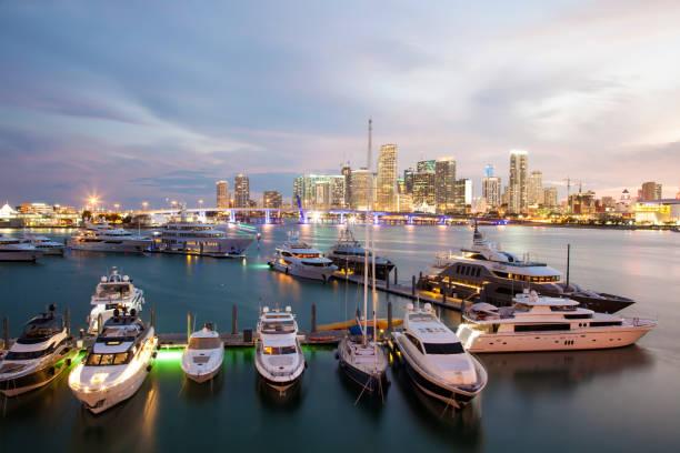 Yachts in Miami, Florida – Foto