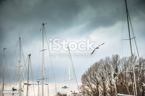 istock yachts on the quay in Sopot 484026604