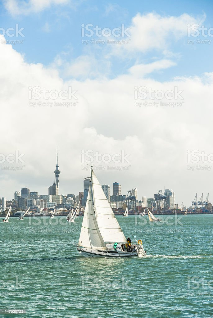 yachts sailing in Auckland Harbour stock photo