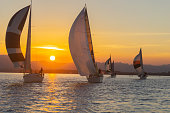 Yachts under sail and silhouette of setting sun on Tauranga harbor New Zealand