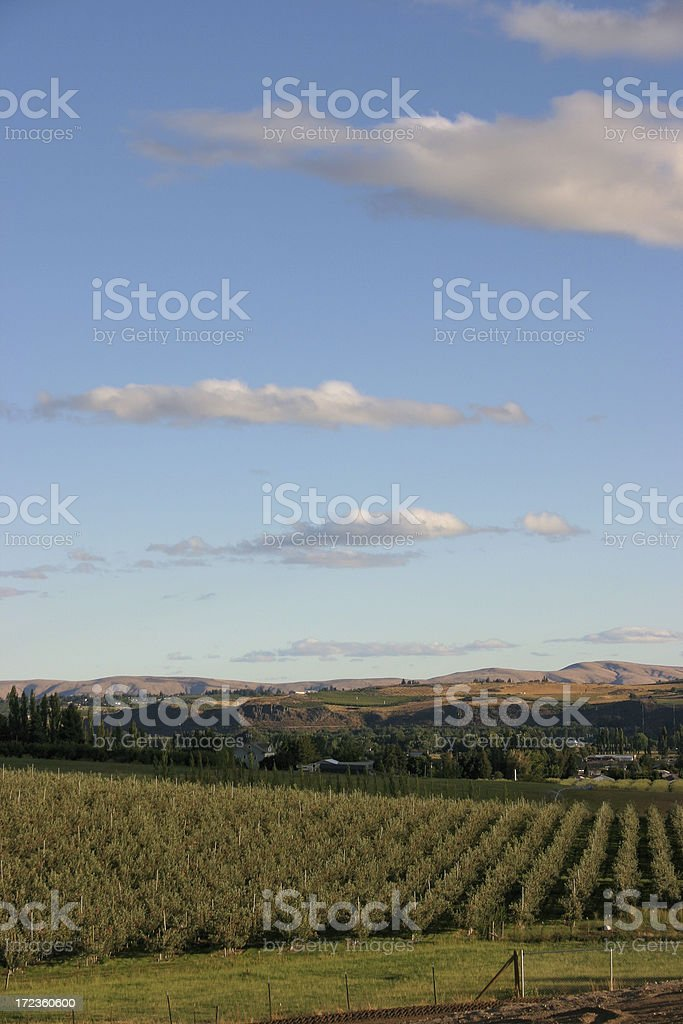 Yakima Valley royalty-free stock photo