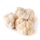 Yamabushitake mushroom or lion mane mushroom isolated on white background.