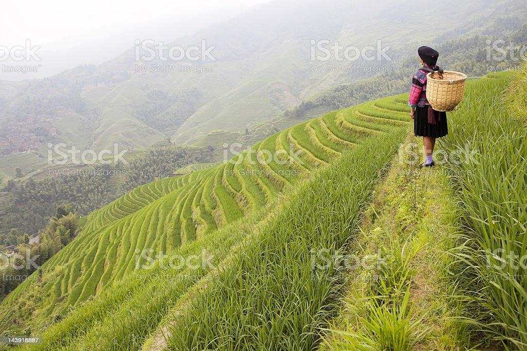 Yao Tribe Woman stock photo