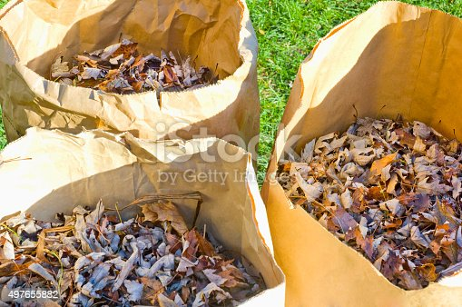 istock Yard bags with leaves 497655882