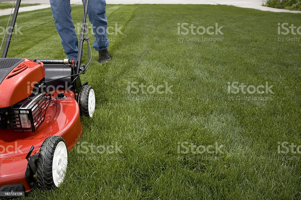 The Essential Laws of Lawns Explained
