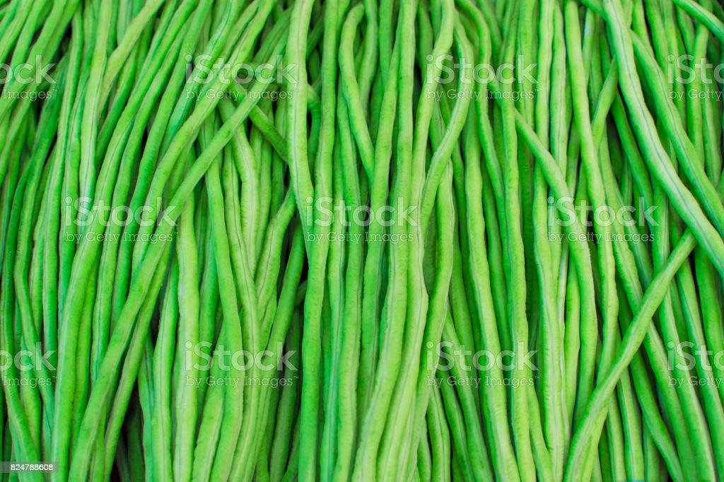 Yard long bean in fresh market. stock photo