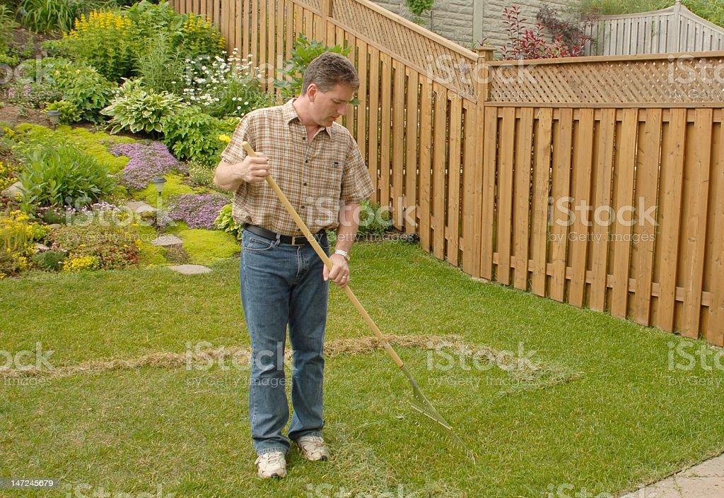 yard work, raking royalty-free stock photo