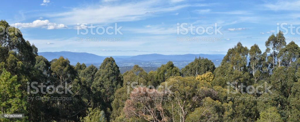 Yarra ranges from Serenity viewpoint, National Rhododendron Garden. stock photo
